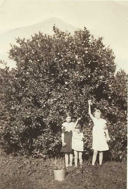 april 7, 1936 Hardin girls